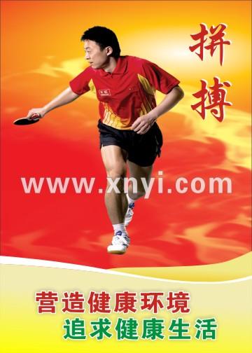 乒乓球宣传挂图